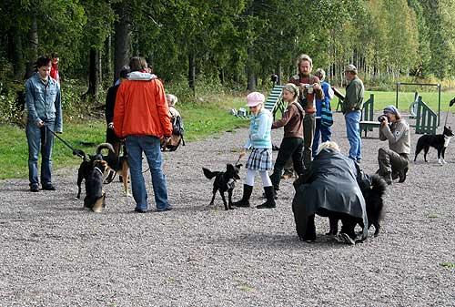 Someron Haukkukallio 2007